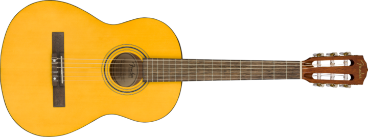 Fender ESC80