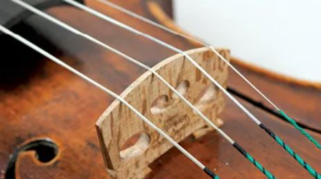 Violin Strenge